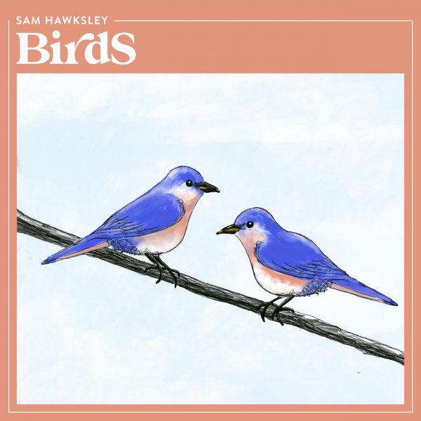 birds album cover high res